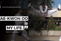 Nakib Karwandgar thoughtSeeker Tae-Kwon-Do is my life